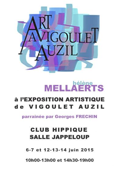 Salle Jappeloup Vigoulet-Auzil
