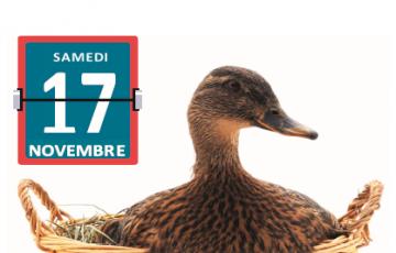 Exposition à Péchabou le samedi 17 novembre 2018